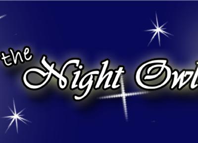 Chicago Blogger- Night Owl Mama
