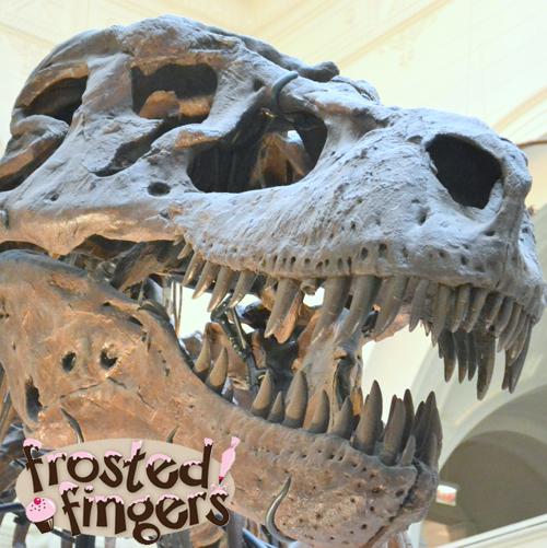 Chicago Field Museum, Tyrannosaurus Rex