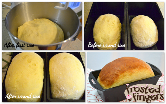 Stages of homemade honey bread