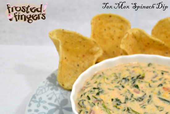 Tex Mex Slow Cooker Spinach Dip Recipe