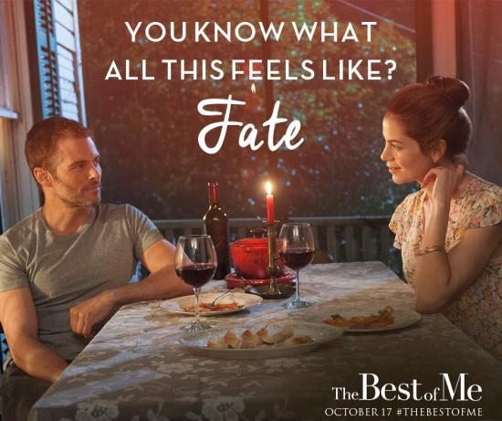 Fate Best of Me