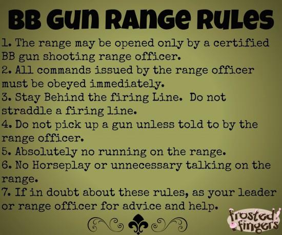 BSA BB Gun Range Rules