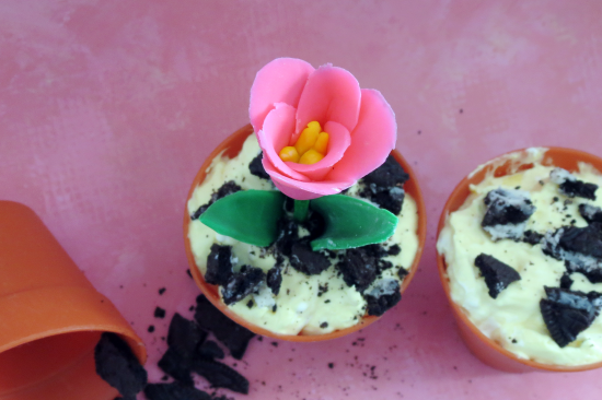 Spring Flower in Dirt Pudding